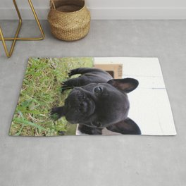 Hello there! Rug