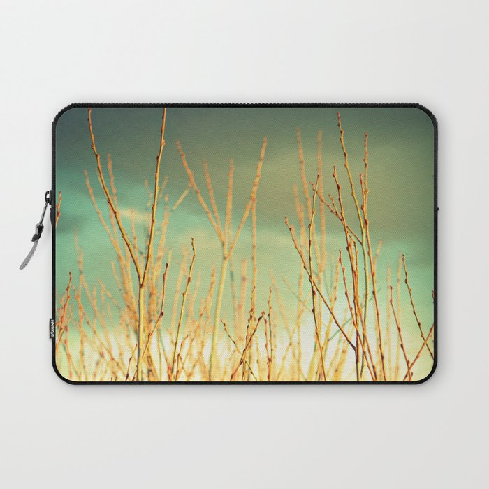 Wind in the Willows Laptop Sleeve