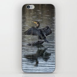 Double-Crested Cormorant Portrait iPhone Skin