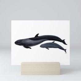 False killer whale Mini Art Print