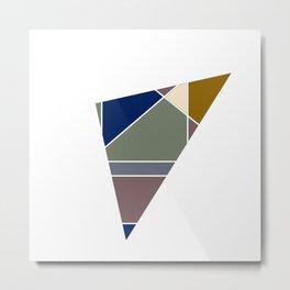 Tano Color  Metal Print