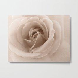 Rose in sepia Metal Print
