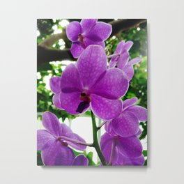 APRIL SHOWERS AND MAY FLOWERS Metal Print