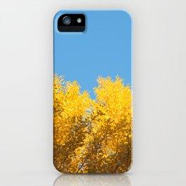fall crush iPhone Case