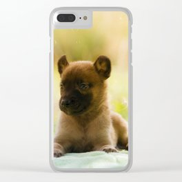 Malinois puppies in the soap blowing game Clear iPhone Case