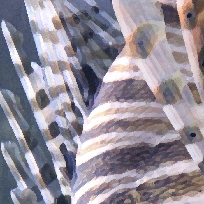 sea fish Leggings