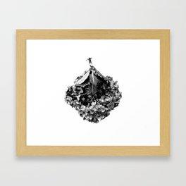 Hydrangea Macrophylla Hortensia Framed Art Print