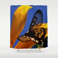 transparent Shower Curtains featuring Transparent Butterfly by Donuts