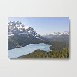 Spring aerial view of the Peyto lake Metal Print