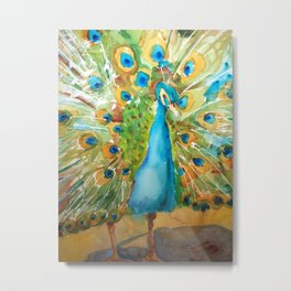 Peacock Outstretched Metal Print