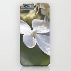 4 petal flower iPhone 6s Slim Case
