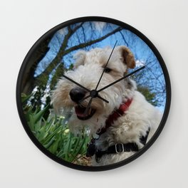 Cheerful Wire Fox Terrier Wall Clock