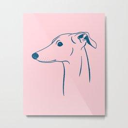Italian Greyhound (Pink and Blue) Metal Print