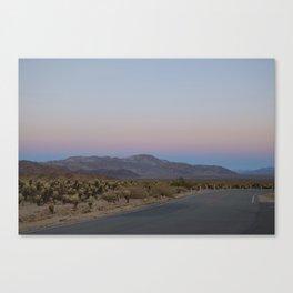 Cactus Garden Sunset Canvas Print