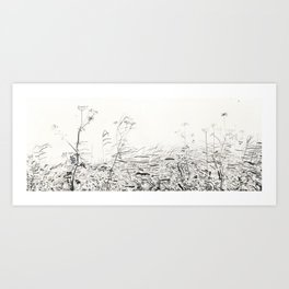 Cow-parsley in Osdorp Art Print