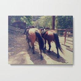 California Horses  Metal Print