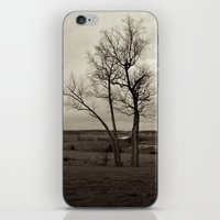 tennessee iPhone & iPod Skins featuring Tennessee by lokiandmephotography