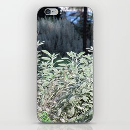 Blessed Sage iPhone Skin