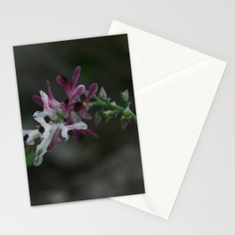 Earth Smoke Flower Stationery Cards
