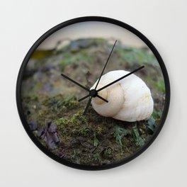 Seashell on the shore Wall Clock