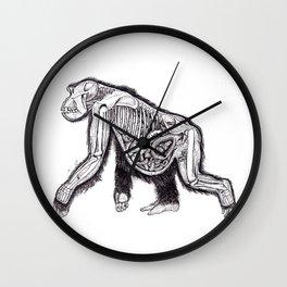 The Anatomy of a Pregnant Gorilla Wall Clock
