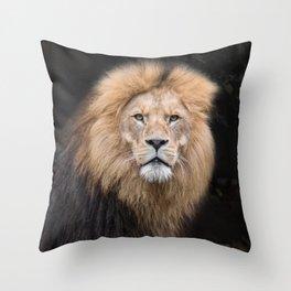 Closeup Portrait of a Male Lion Throw Pillow