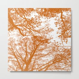 Tangerine tree silhouettes Metal Print
