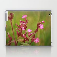 Pink Summer flower Laptop & iPad Skin