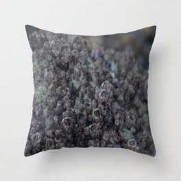 Barnacle Party Throw Pillow