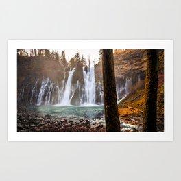 Photo California USA McArthur-Burney Falls Memorial State Park Cliff Nature Autumn Waterfalls Trunk tree Rock Crag Art Print