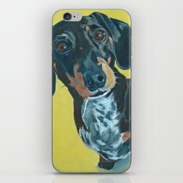 Dachshund Dog Portrait iPhone Skin