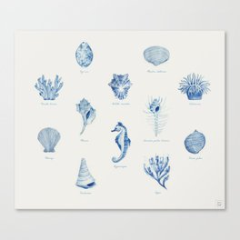 Sea Series Canvas Print