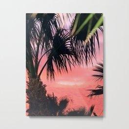 palm paradise Metal Print