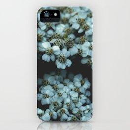 Botanical Still Life Photography Tiny Flowers iPhone Case
