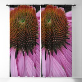 Pink Cone Flower on Black Blackout Curtain