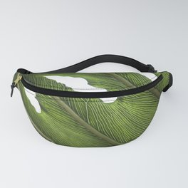 Big Leaves Photography | Tropical Plant | Green | Botanical Art Print | Nature Fanny Pack
