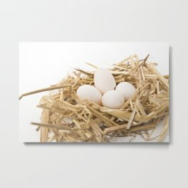 Nest with small white egg side view Metal Print