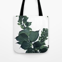 BLUE-GREEN Tote Bag