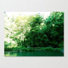 Dead Pool Canvas Print