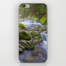 Forest moss with stream iPhone Skin