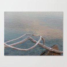 Driftwood Dawn, Florida Canvas Print
