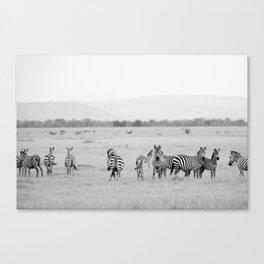 Zebras on The Serengeti Canvas Print