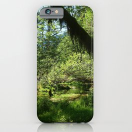 Hoh Rainforest Tones iPhone Case