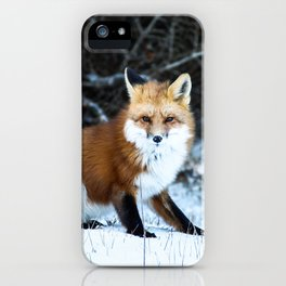 One Fox iPhone Case