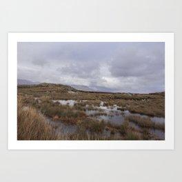 Connemara Marshland Art Print