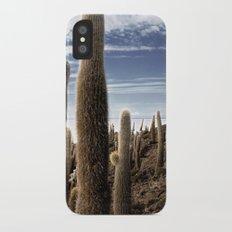 Cactus in Incahuasi iPhone X Slim Case