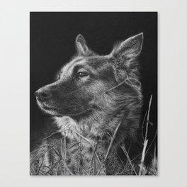 German Shepherd Dog Canvas Print
