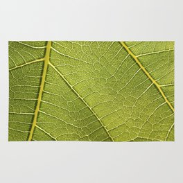 Fig Leaf Rug