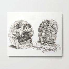 Skull and Brain Metal Print