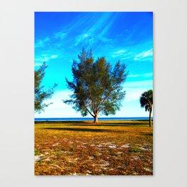 HEAVEN SKYS Canvas Print